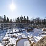Assiniboine Park Zoo - Polar Bear Rehabilitation Enclosure
